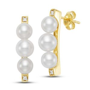 Sorrento Bar Earrings